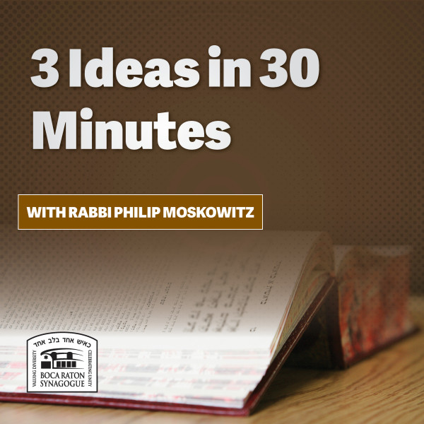 3 Ideas in 30 Minutes