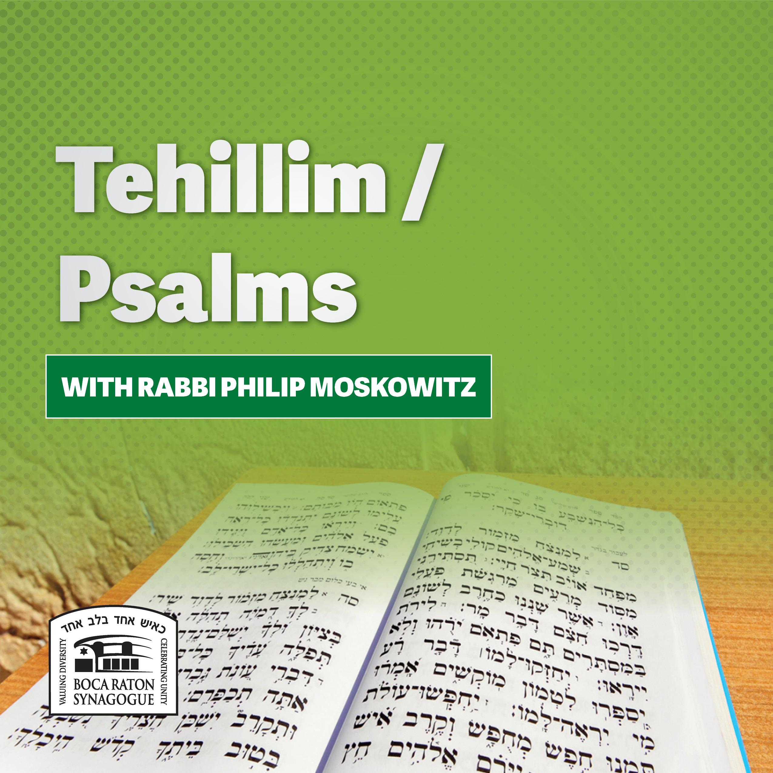 Listen: Tehillim / Psalms